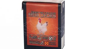 Non-Stop Dogwear Energy Pâté Fresh Chicken
